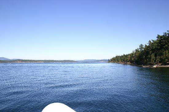 Expeditions NW: in the San Juan Islands
