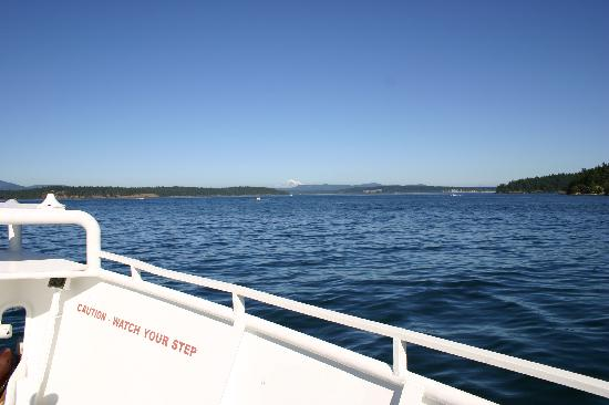 Expeditions NW: Calm cruise in San Juan Islands
