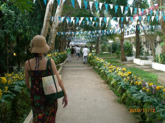 Pacific Cebu Resort: 部屋の前は可愛いお庭見たい