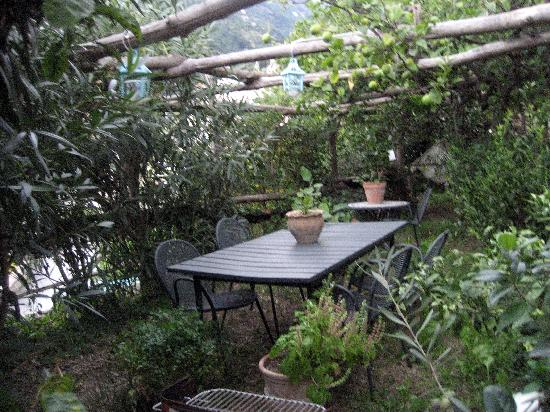 Free Holiday Bed & Breakfast: In the back yard