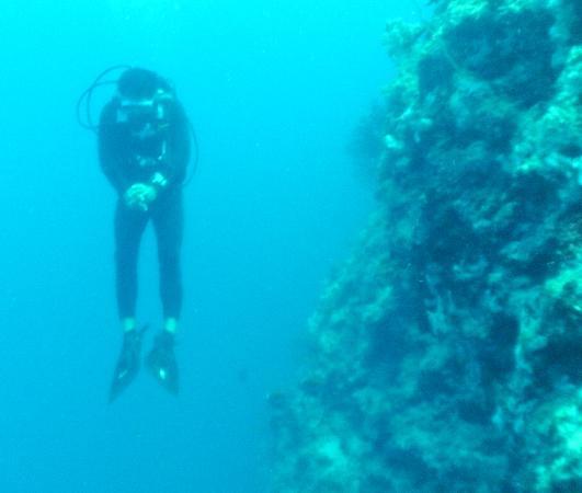 Nalusuan Island Resort: dive