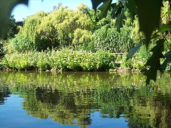 Parc Floral et Tropical de la Court d'Aron: partie du jardin