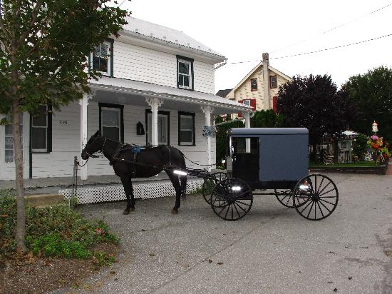 Lancaster County, PA: Horse and carriage