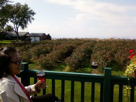 Charlotte Village Winery: My wife enjoying her free glass of blueberry wine