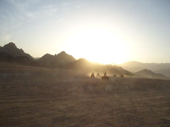 Aqua Blue Sharm Excursions - Day Tours: Sunset on the quads
