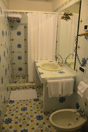 Hotel Canasta: Shower and toilet