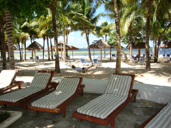 Oasis Palm: vista de la playa