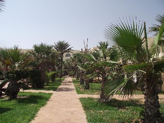 Hasdrubal Thalassa & Spa Djerba: jardin