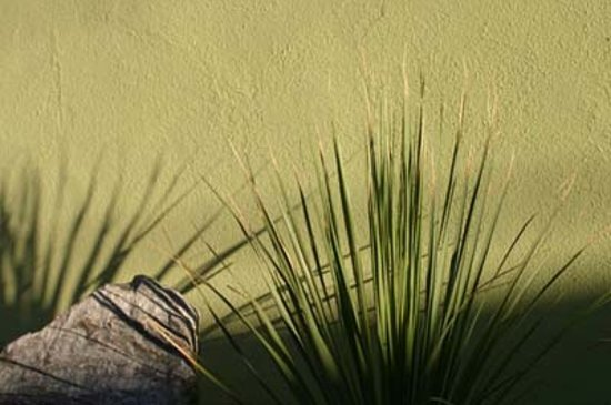 Century Palm Springs: Cool