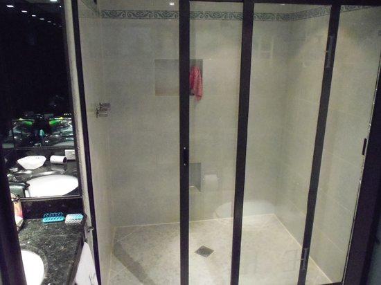 Hotel Embassy: Toilette, Dusch