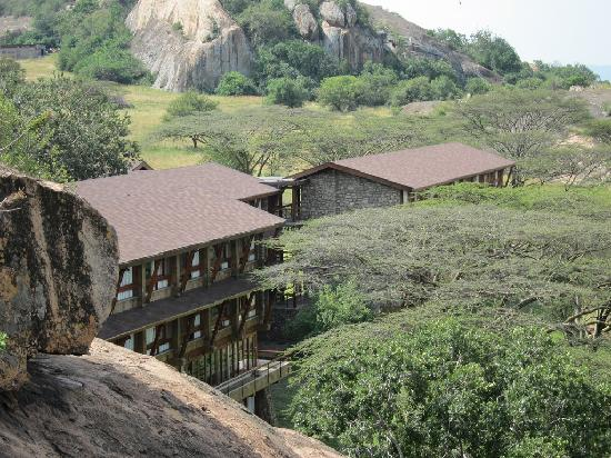 Lobo Wildlife Lodge : The lodge as viewed from the top of Lobo Rock