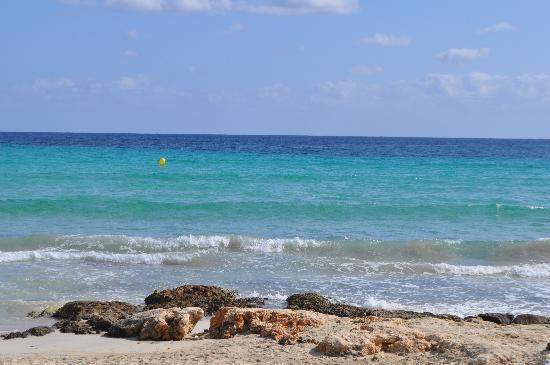 Hipotels Flamenco Cala Millor : das Meer ist wunderbar sauber