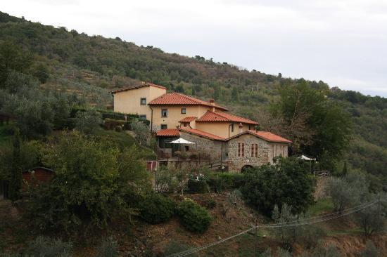 Podere Casarotta: view