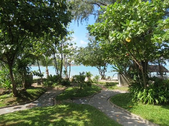 โรงแรมสมุย ฮันนี่ คอทเทจ บีช รีสอร์ท: View from our verandah