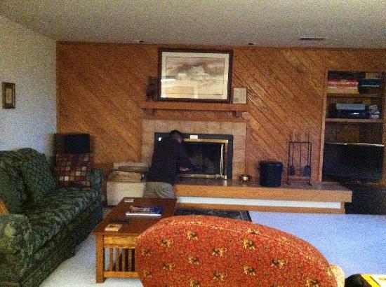 Wintergreen Resort: Living room