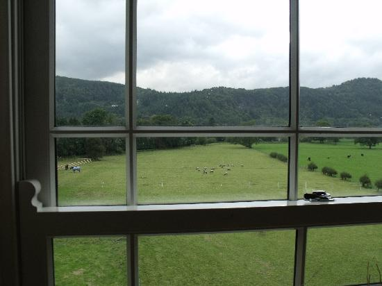The Meadowsweet Hotel: View from room 8