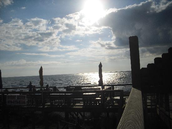 Ocean Village Hotel 사진