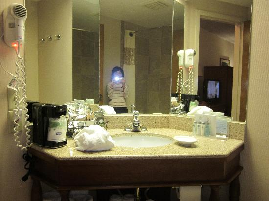 Hampton Inn Tucson-Airport: Bathroom Vanity
