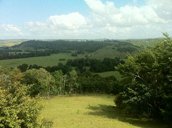 Byron Hinterland Villas: Gorgeous countryside view
