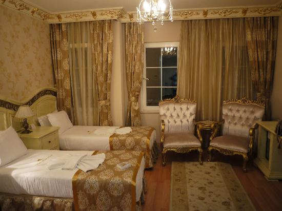 White House Hotel Istanbul: 室内