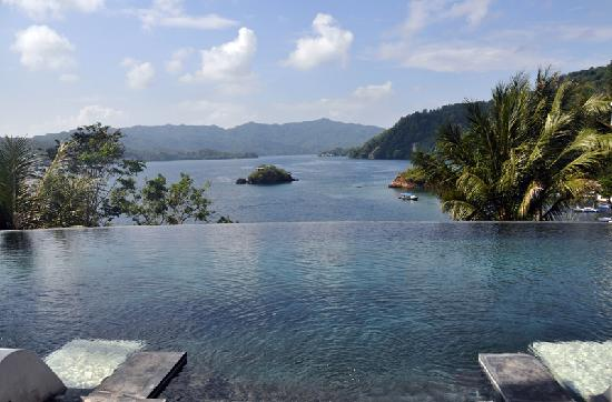 DABIRAHE Dive, Spa and Leisure Resort (Lembeh): swimming pool view