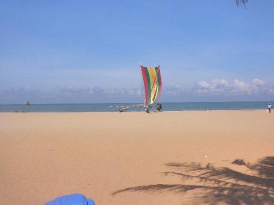 พาราไดซ์ บีช: Beach view