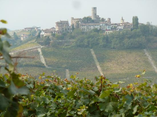 Serralunga d'Alba, Italy: Blick vom Hotel in die Weinberge des Barolo