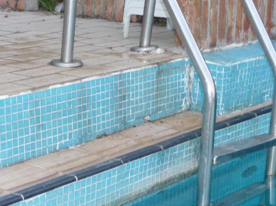 Villa Fiorita: Wouldn't want to swim in the pool!