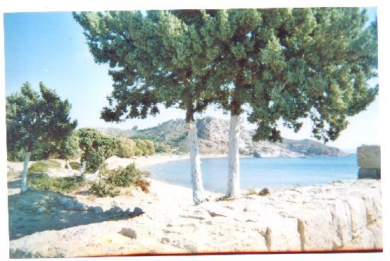 Antony's Hotel: Ag. Stefanos beach