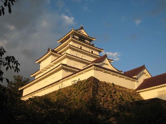 Tsuruga Castle : 瓦の色が珍しいお城