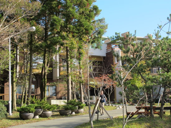 Seogwipo Natural Recreation Forest: Building 2