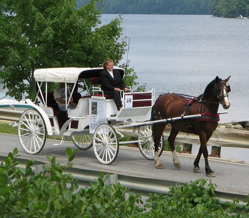 Carousel Horse Farm: Our carriage available for weddings and tours