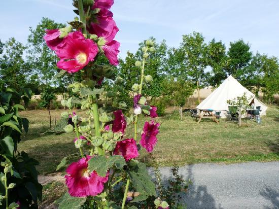 Aire Naturelle de Camping Le Verger : Le camping