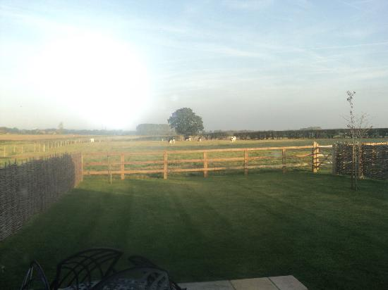 Wheatacre Hall Barns: View from the barn