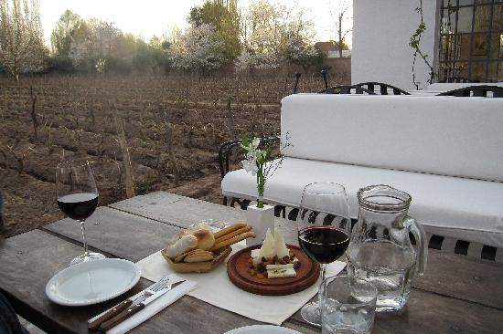 Finca Adalgisa Wine Hotel, Vineyard & Winery: Complimentary wine and cheese