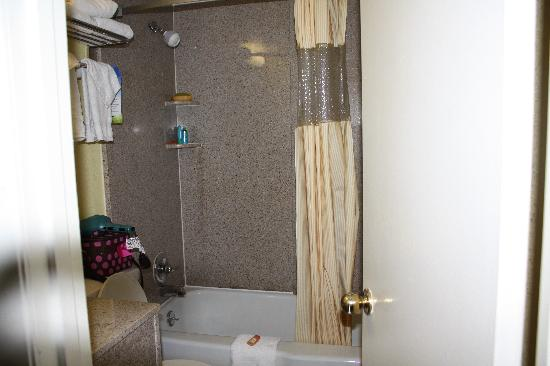Days Inn And Suites Downtown Gatlinburg Parkway: Bathroom; perfect size, not to small