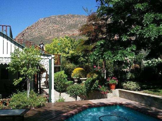 Villa Victoria Guesthouse : Pool area