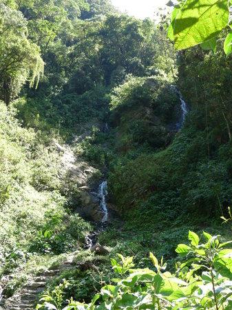 Los Jardines de Mandor: Waterfalls in Mandor Gardens