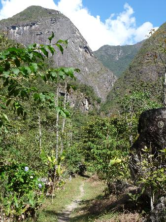 Aguas Calientes, Peru: Path through the gardens