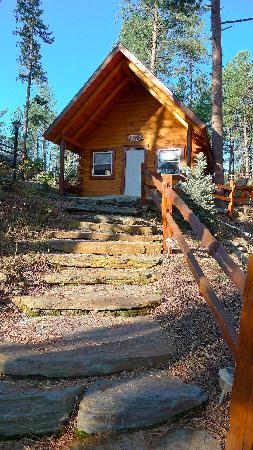 Rustic Ridge Guest Cabins: cabin 5