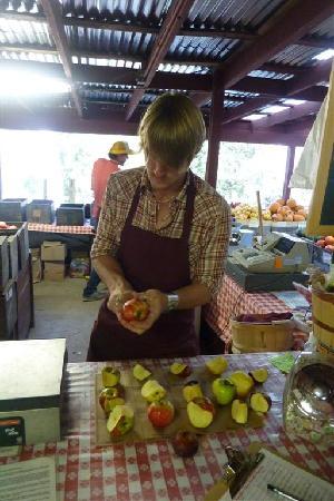 Gopher Glen Farms: Apple Tasting