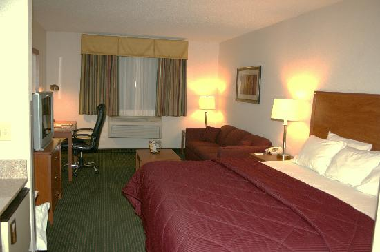 Quality Inn Denver Westminster: King bed & Sofa Bad