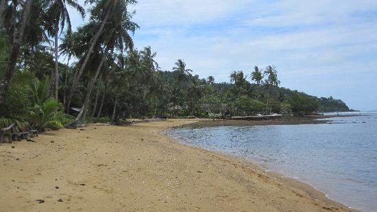 Bailan Beach Resort : Looking back at the resort from the beach