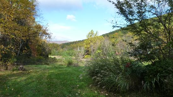 The Inn at Sugar Hollow Farm: View from the Inn