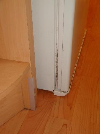 Parkdean - Holywell Bay Holiday Park: Mould on the non shutting fridge door