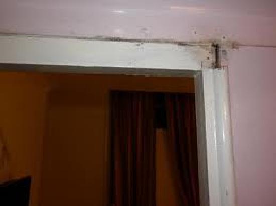 New Dawn Hotel: La porta...