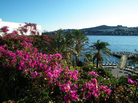 Hotel Baia Bodrum: View from the lifts