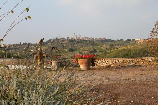 Agriturismo Poggiacolle: View from our patio