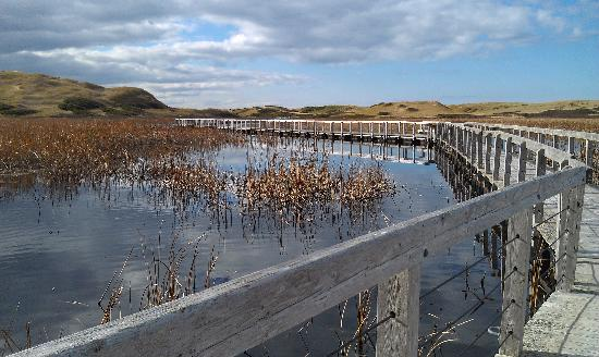 Shipwright Inn: Causeway at Greenwich, PEI National Park.