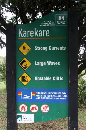 Karekare Beach: A sign of things to come